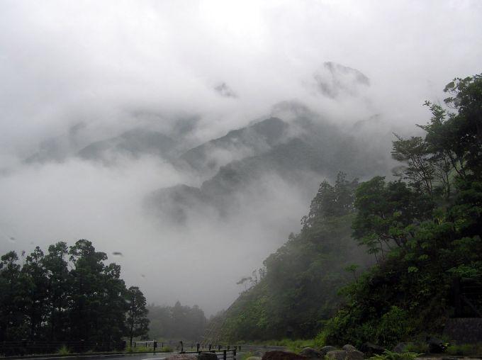 yakushima-min